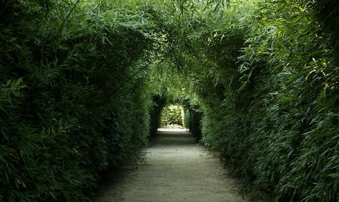 Labirinto di Masone Pasquetta