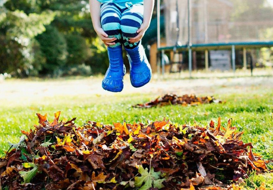 Jump In 6 Creative Ways to Play in a Giant Pile of Leaves_Jumping into leaves