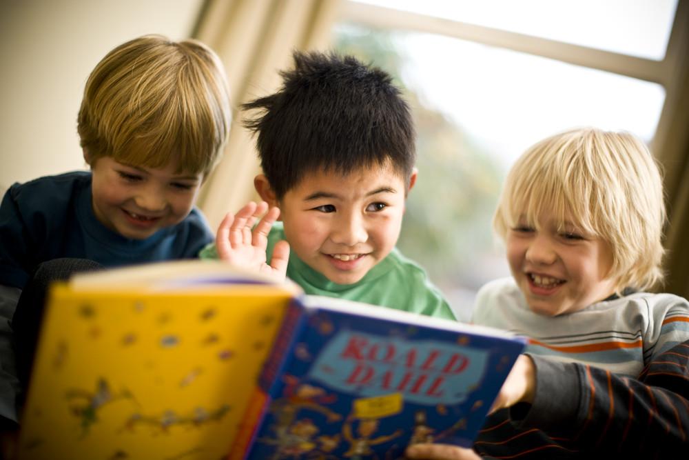 Biblioteca castellanza inglese bambini
