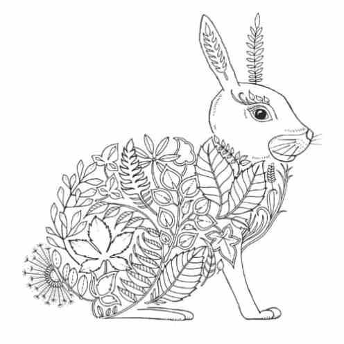 EF-Rabbit-Thumb